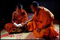 Buddhist novice monks reading. Luang Prabang, Laos
