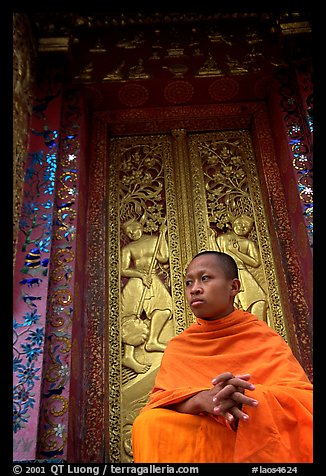 Buddhist novice monk at Wat Xieng Thong. Luang Prabang, Laos