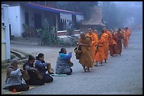 Women line up to offer alm to buddhist monks. Luang Prabang, Laos