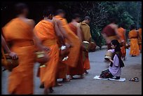 Buddhist monks walking past alm-giving woman. Luang Prabang, Laos