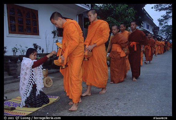 Buddhist monks receiving alm from woman. Luang Prabang, Laos (color)
