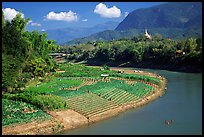 Fields on the banks of the Nam Khan river. Luang Prabang, Laos ( color)