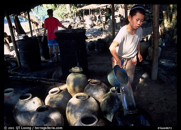 Making of the Lao Lao, strong local liquor in Ban Xang Hai village. Laos