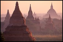 View over temples from Mingalazedi. Bagan, Myanmar ( color)