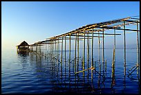 Stilts huts. Inle Lake, Myanmar ( color)