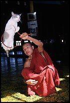 Jumping cat and monk. Inle Lake, Myanmar ( color)