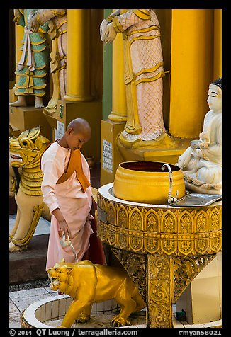 Nun pouring water at planetary post. Yangon, Myanmar (color)