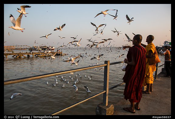 Seagulls flying as monks feed them from Botataung pier. Yangon, Myanmar (color)