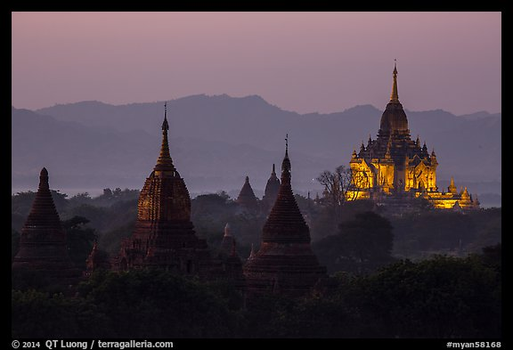 Temples seen from Shwesandaw at dusk. Bagan, Myanmar (color)