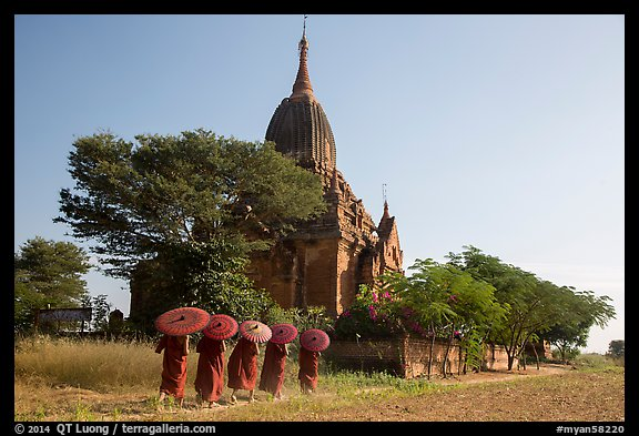 Five novices with red umbrellas walking below temple. Bagan, Myanmar (color)