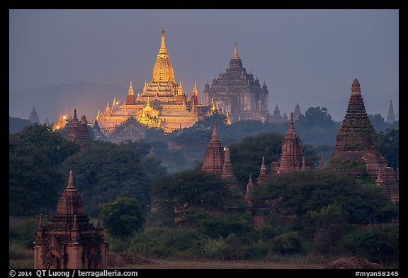 Temples at dawn, including Ananda and Thatbyinnyu. Bagan, Myanmar (color)