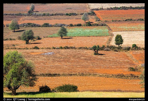 Colorful mosaic of cultivated fields. Shan state, Myanmar (color)