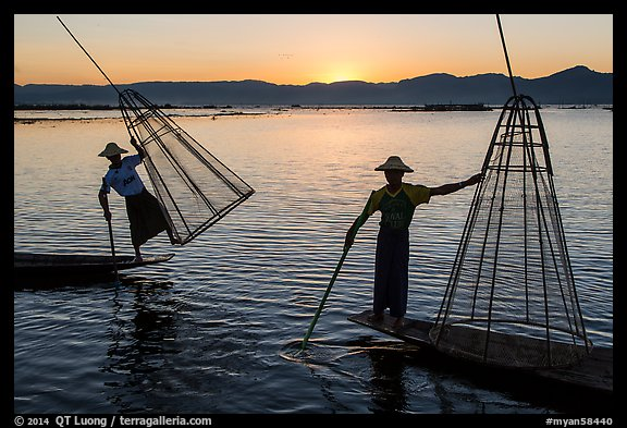 Intha fishermen lifting traditional conical net at sunset. Inle Lake, Myanmar (color)