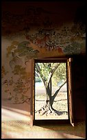 Tree seen through window. Muang Boran, Thailand (color)