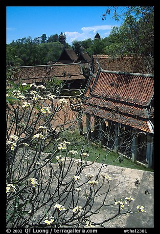 Blooming tree and rooftops. Muang Boran, Thailand (color)