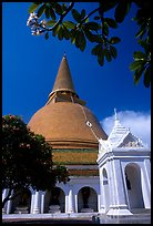 Phra Pathom Chedi, the tallest buddhist monument in the world. Nakkhon Pathom, Thailand (color)