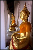 Buddhas images in gallery, Phra Pathom Wat. Nakkhon Pathom, Thailand (color)