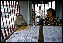 Lottery tickets vendor and monkey, San Phra Kan. Lopburi, Thailand (color)