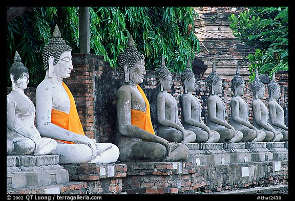 Buddha statues, swathed in sacred cloth as a sign of reverence, Wat Chai Mongkon. Ayuthaya, Thailand (color)