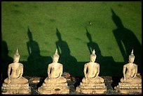 Buddha images and shadows, Wat Chai Mongkon. Ayuthaya, Thailand (color)