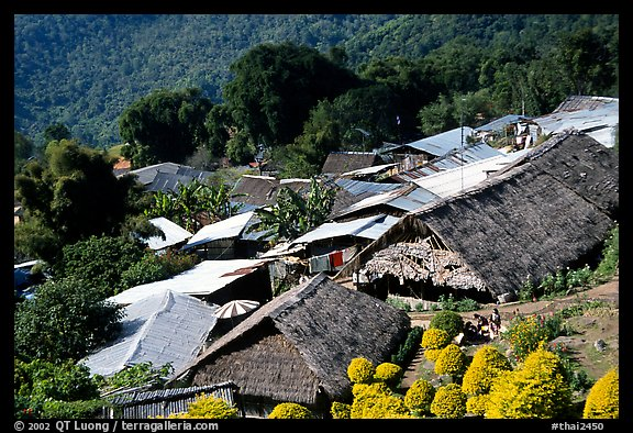 Hmong village. Chiang Mai, Thailand (color)