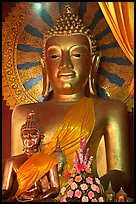 Buddha images of several sizes. Chiang Mai, Thailand (color)