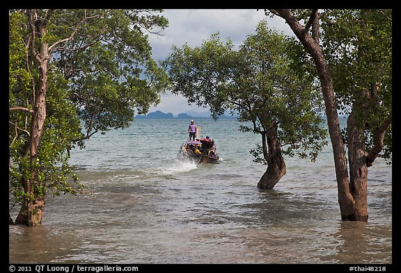 Mangroves and boat in distance, Ao Rai Leh East. Krabi Province, Thailand (color)