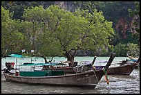 Boats, mangroves, and cliff, Rai Leh East. Krabi Province, Thailand
