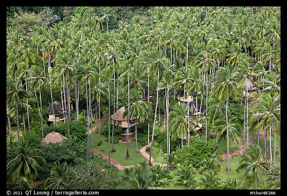 Resort and palm trees from above, Railay. Krabi Province, Thailand (color)