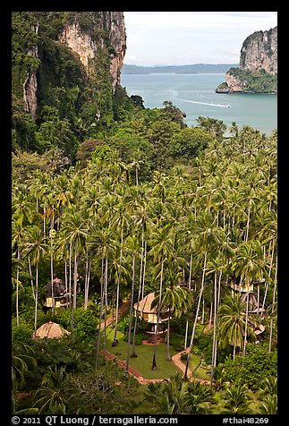 Resort huts, palm trees, and bay seen from Laem Phra Nang, Railay. Krabi Province, Thailand