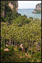 Resort huts, palm trees, and bay seen from Laem Phra Nang, Railay. Krabi Province, Thailand ( color)