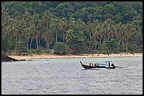 Longtail boat sailing in front of palm-fringed beach, Phi-Phi island. Krabi Province, Thailand