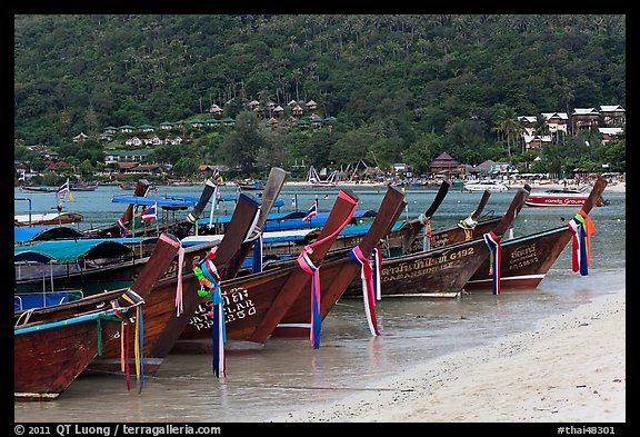 Row of long tail boats on Lo Dalam beach, Phi-Phi island. Krabi Province, Thailand (color)