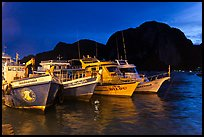 Fishing and tour boats at night, Ko Phi-Phi Don. Krabi Province, Thailand ( color)