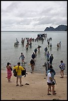 Large group of tourists disembarking from boats, Ko Phi-Phi Don. Krabi Province, Thailand (color)