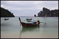 Long Tail boats moored in bay, early morning, Ko Phi Phi. Krabi Province, Thailand