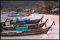 Long tail boats Tonsai beach and village, Ko Phi Phi. Krabi Province, Thailand (color)