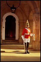 Horseguard standing in front of door. London, England, United Kingdom (color)