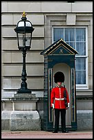 Guard and guerite, Buckingham Palace. London, England, United Kingdom ( color)