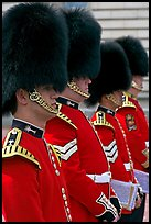 Musicians of the Guard  with tall bearskin hat and red uniforms. London, England, United Kingdom (color)