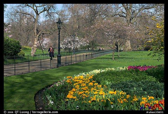 Picturephoto businessman walking in saint james park amongst businessman walking in saint james park amongst flowers london england united kingdom mightylinksfo