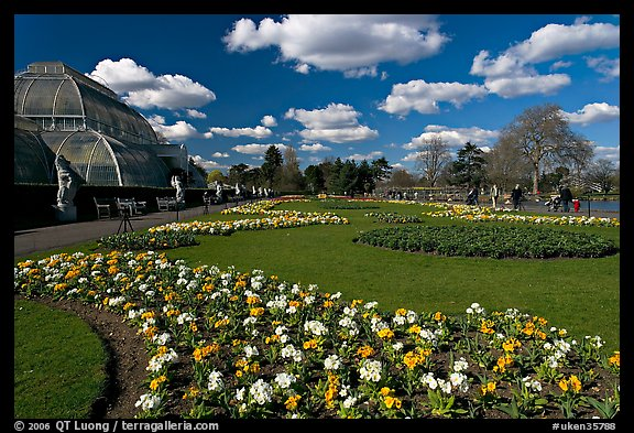 Flower bed and Palm House, afternoon. Kew Royal Botanical Gardens,  London, England, United Kingdom