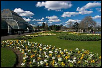 Flower bed and Palm House, afternoon. Kew Royal Botanical Gardens,  London, England, U