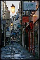 Lamps, pigeons, and narrow street. Bath, Somerset, England, United Kingdom