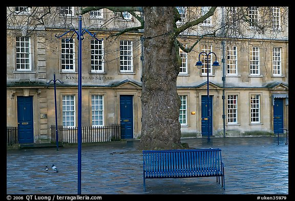 Blue metal bench and tree, Kingsmead Square. Bath, Somerset, England, United Kingdom