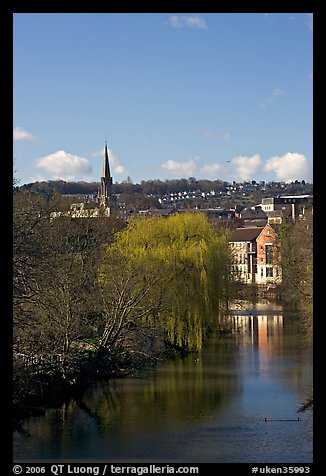 River Avon, willows, and church spire. Bath, Somerset, England, United Kingdom (color)