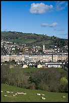 Sheep and distant view of town. Bath, Somerset, England, United Kingdom (color)