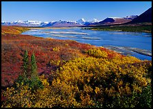 Susitna River and fall colors on the tundra, Denali Highway. Alaska, USA