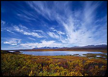 Clouds, tundra in fall color, and lake along Denali Highway. Alaska, USA