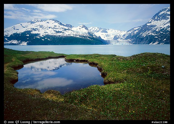 Pond, mountains, and glaciers across Harriman Fjord. Alaska, USA (color)